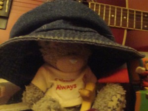Cariad Bear wears The Story Hat
