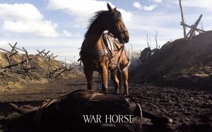 ws_War_Horse_Movie_1600x1200