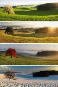 Colours of the Seasons